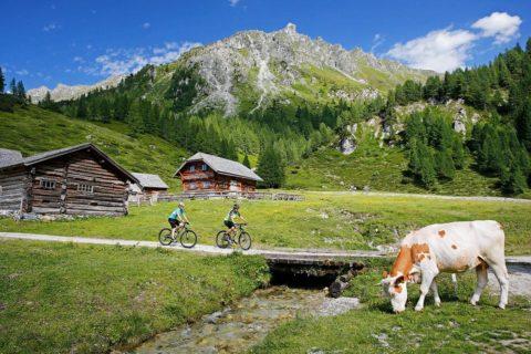 Mountainbiken, Sommerurlaub in der Urlaubsregion Schladming-Dachstein