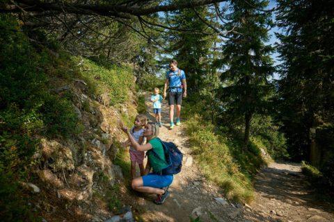 Wandern, Sommerurlaub in der Urlaubsregion Schladming-Dachstein